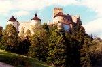 Zamek w Pieninach